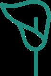 viveros-fadura-alquila-plantas