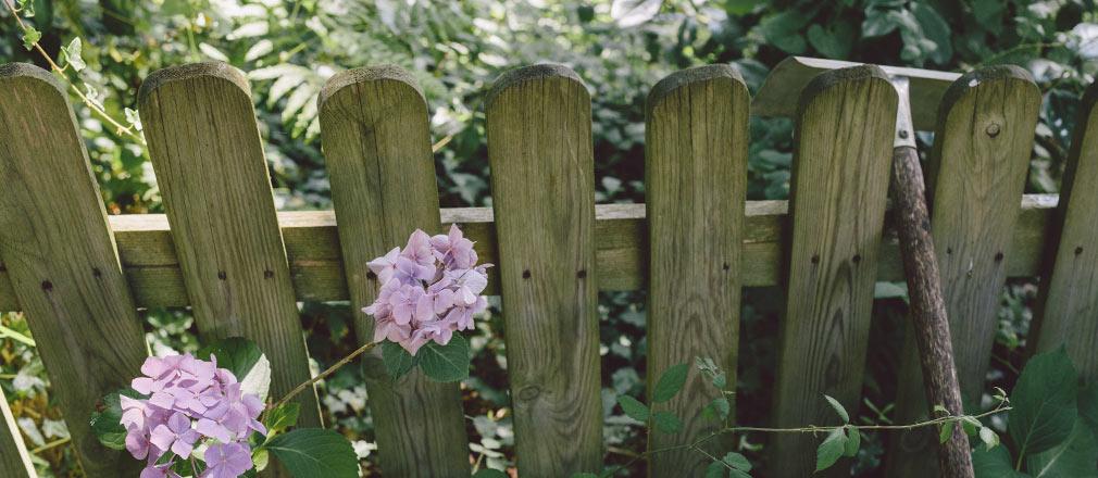 viveros-fadura-diseño-jardines